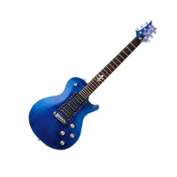 PRS SE Zach Myers royal...